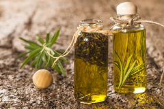 Essential oils of lavender and rosemary Stock Images