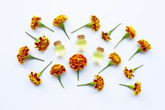 Essential oils of marigold flower. On white background stock photo