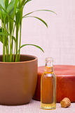 Essential oils for massage Royalty Free Stock Photography