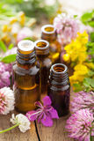Essential oils and medical flowers herbs Royalty Free Stock Photos