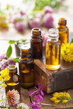 Essential oils and medical flowers herbs Royalty Free Stock Images