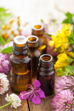 Essential oils and medical flowers herbs Royalty Free Stock Image
