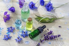 Herbal therapy. essential oils and medical flowers and herbs on old blue cracked wooden background copy space stock photography