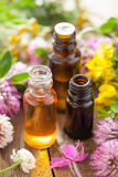 Essential oils and medical flowers herbs Stock Photography