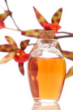Essential oils and orchid Royalty Free Stock Images