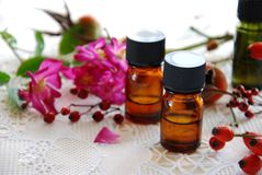 Essential oils with rose hips Stock Photos