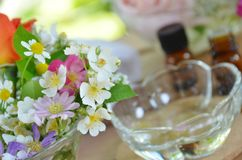 Essential oils and roses Stock Photos