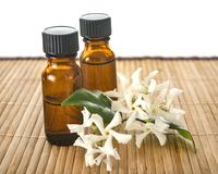 Essential oils in studio. Essential oils in front of white background Stock Photos