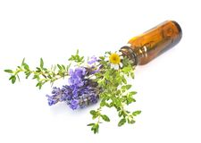 Essential oils in studio. Essential oils in front of white background stock photography