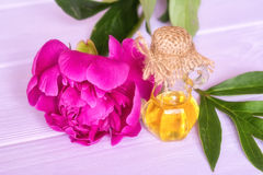 Essential peony oil royalty free stock images