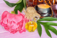 Essential peony oil royalty free stock image