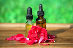 Essential rose oil Stock Images