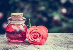Essential rose oil in a glass bottle. Love elixir. Love potion. Copy space stock photo