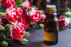 Essential rose oil Royalty Free Stock Images