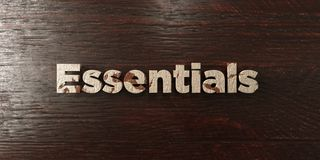 Essentials - grungy wooden headline on Maple  - 3D rendered royalty free stock image. This image can be used for an online website banner ad or a print Stock Photos
