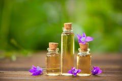 Essentie van bloemen op lijst in mooie glaskruik royalty-vrije stock afbeeldingen