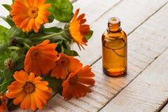 Essentiële aromaolie van calendula Stock Foto