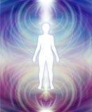 Essere umano Aura Energy Field Immagine Stock