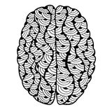Essere umano Brain Doodle Immagini Stock