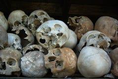 Essere umano del cranio Fotografia Stock Libera da Diritti