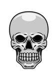 Essere umano del pericolo o cranio del mostro Immagini Stock Libere da Diritti