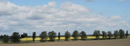 Essex Landschaft Lizenzfreie Stockfotografie