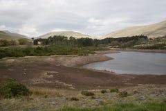 Essiccamento del bacino idrico in su Fotografia Stock Libera da Diritti