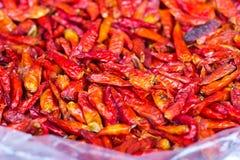 Essiccamento del pepe di peperoncini rossi rossi. Immagini Stock Libere da Diritti