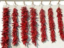 Essiccamento del pepe rosso Immagine Stock