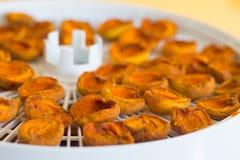 Essiccatore dell'alimento con le albicocche secche su una tavola immagini stock