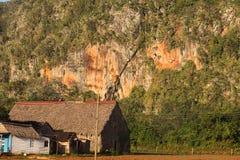 Essiccatore per tabacco nell'ambito di un mogote nella valle di Vinales Immagine Stock