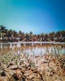 Essiccazione del lago di estate dovuta riscaldare in Pondicherry fotografia stock libera da diritti