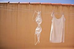 Essiccazione lavata della biancheria intima immagini stock libere da diritti