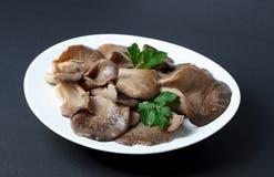 In Essig eingelegte Austern-Pilze mit Petersilie treiben auf einer Platte Blätter Stockfoto