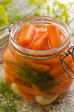 In Essig eingelegte Karotten lizenzfreie stockfotografie