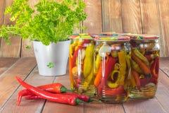 In Essig eingelegte Paprika-Pfeffer im Glasgefäß mit frischen Paprikas und Parsle lizenzfreie stockfotos