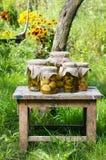 In Essig eingelegte Pilze und Gurken Lizenzfreies Stockfoto