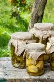 In Essig eingelegte Pilze und Gurken Stockfotos