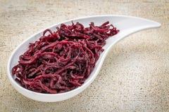 In Essig eingelegter Salat der roten Rüben, des dulse und des Kohls Stockfotografie