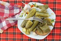 Essiggurken mit Brot auf der Platte Lizenzfreies Stockfoto