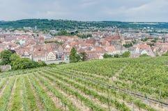 Esslingen am Neckar views from the Castle, Germany Stock Photography