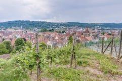 Esslingen am Neckar views from the Castle, Germany Stock Image