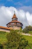 Esslingen-Schloss Burg, Deutschland stockbilder