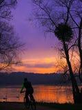 Essonne France : Un cycliste dans le beau paysage au coucher du soleil avec des cygnes sur l'eau image stock