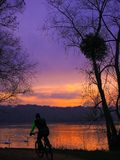 Essonne Frankrijk: Een fietser in mooi landschap bij zonsondergang met zwanen op water stock afbeelding