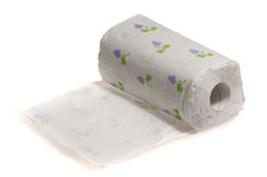 Essuie-main de papier d'isolement Photo libre de droits