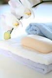 essuie-main de savon Image libre de droits