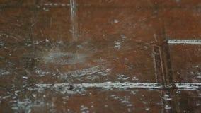 Está lloviendo afuera La lluvia cae caídas en la tierra Cámara lenta Cierre para arriba metrajes