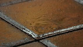 Está lloviendo afuera La lluvia cae caídas en la tierra Cámara lenta Cierre para arriba almacen de video