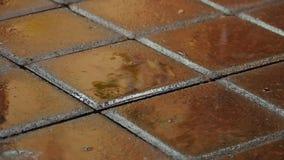 Está lloviendo afuera Las gotas de la lluvia caen en la cámara lenta de la teja del pavimento Cierre para arriba metrajes